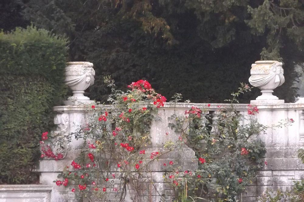 gardenvases